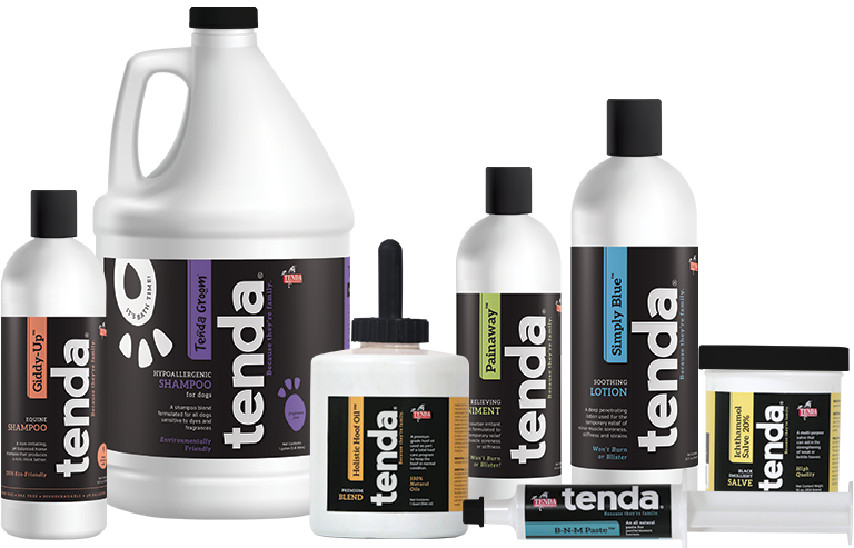 About Us - Tenda Horse and TendaGroom Equine and Pet Care